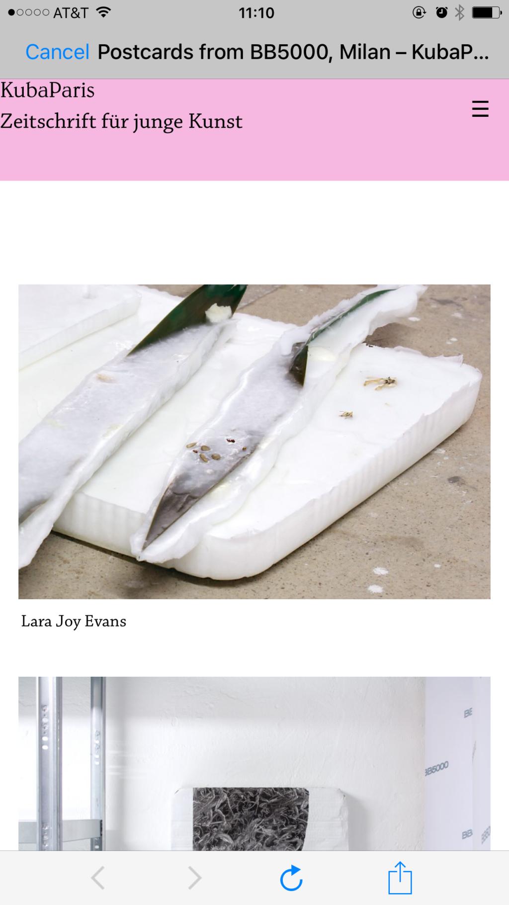 Lara Joy Evans domestic tranquility/401k/bluesky raw