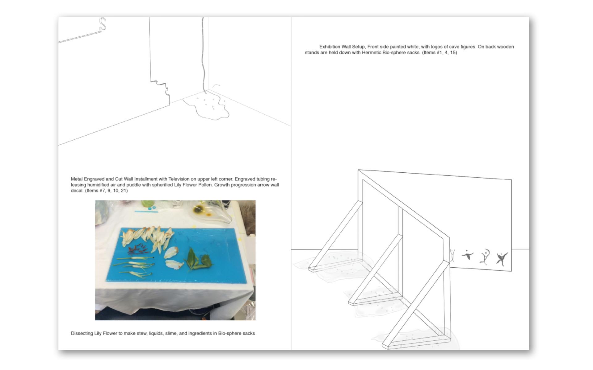 Lara Joy Evans Catalogue of an Immaterial Exhibition